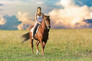 The Hidden Costs of Horse Ownership